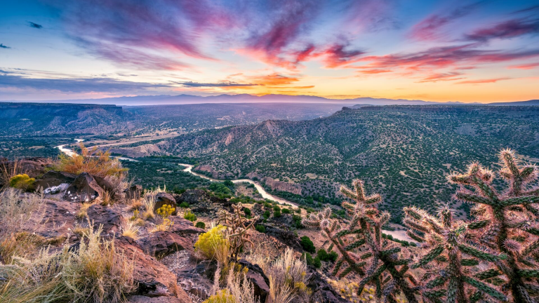 press release - Census New Mexico