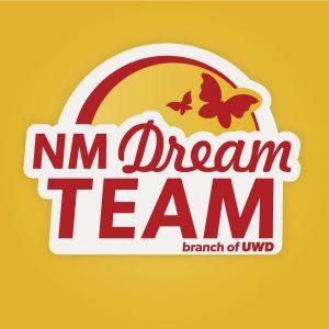 Strategic Partners - NM Dream Team